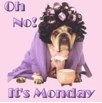 NDT  its Monday Happy Monday!!! How are you guys this mornin? Is a dreary lookin day so far but it gonna get bettah. Hope we all hasa good day!!!