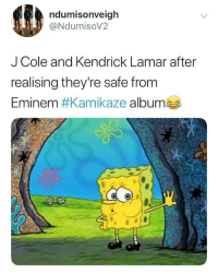 Eminem, J. Cole, and Kendrick Lamar: ndumisonveigh  @NdumisoV2  J Cole and Kendrick Lamar after  realising they're safe from  Eminem #Kamikaze albumes The only survivors