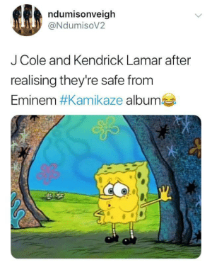 The only survivors by BigBadJho MORE MEMES: ndumisonveigh  @NdumisoV2  J Cole and Kendrick Lamar after  realising they're safe from  Eminem #Kamikaze albumes The only survivors by BigBadJho MORE MEMES