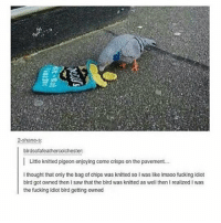 Fucking, Memes, and Saw: ne  2-shane.s  birdsofafeathercolchester:  Little knitted pigeon enjoying come crisps on the pavement.  I thought that only the bag of chips was knitted so I was like Imaoo fucking idiot  bird got owned then I saw that the bird was knitted as well then I realized I was  the fucking idiot bird getting owned My knees hurt