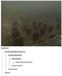 Nirvana, Graveyard, and This: neaislove  corneliusdawgiusmaximus:  nirvana-bleach89  dreamdeath:  underwater graveyard  where is this?  Underwater.  Thanks Very helpful