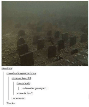 Dank, Memes, and Nirvana: neaislove:  corneliusdawgiusmaximus:  nirvana-bleach89:  dreamdeath  underwater graveyard  where is this?  Underwater.  Thanks Meirl by Derplaty MORE MEMES