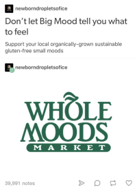 Big Mood: neborndropletsofice  Don't let Big Mood tell you what  to feel  Support your local organically-grown sustainable  i am god  gluten-free small moods  newborndropletsofice  I am  WHOLE  MOODS  M A R K ET  39,991 notes