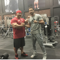 Boxing, Flexing, and Memes: NEC Today boxing superstar @chris_algieri visited @project_flex_fl DragonsLair whilst on his stay in SFlo. - Mad respect to what he's achieved, very humble & driven..... Stay tuned! Respect BeFlextraordinary FlexLewis bodybuilding Boxing Champ DreamBig
