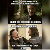 Hbo, Lol, and Memes: NED, DO YOUKNOW WHY NO ONE IN  WINTERFELL HAS ALZHEIMER'S DISEASE?  CAUSE THE NORTH REMEMBERS  USTJOKING!JUSTJOKING!  ThronesMemes  NED, YOU REALLY HAVE NO SANSA  OF HUMOR Lol gameofthrones got hbo asoiaf thronesmemes