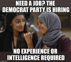 democrat: NEED A JOB? THE  DEMOCRAT PARTY IS HIRING  NO EXPERIENCE OR  INTELLIGENCE REQUIRED  imgflip.con