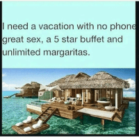 Memes, 🤖, and Margarita: need a vacation with no phone  great sex, a 5 star buffet and  unlimited margaritas. DEFINITELY 💑👙🌊🏝 WOULDBENICE IJS FRFR