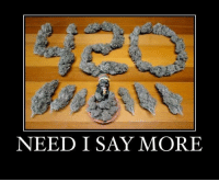 It's 4:20 Somewhere: NEED I SAY MORE It's 4:20 Somewhere