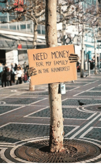 """Money, Tumblr, and Blog: NEED MONEY  FOR MY FAMI  IN THE RAINFOREST <p><a href=""""https://epicjohndoe.tumblr.com/post/172103362508/need-some-money"""" class=""""tumblr_blog"""">epicjohndoe</a>:</p>  <blockquote><p>Need Some Money</p></blockquote>"""