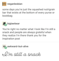 Alive, Awkward, and Thank You: neganlesbian  some days you're just the squashed nutrigrain  bar that exists at the bottom of every purse or  bookbag  biglawbear  You're right no matter what I look like I'm still a  snack and people are always grateful when  they realize I'm there thank you for the  inspiration post  awkward-but-alive  0'm  still a snack <p>The bright side</p>