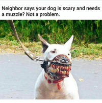 😂😂😂😂😏: Neighbor says your dog is scary and needs  a muzzle? Not a problem. 😂😂😂😂😏