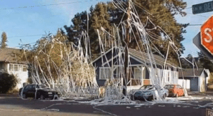 Neighbors house got TP'd last night and now it's listed on Zillow for $12.5 million.: Neighbors house got TP'd last night and now it's listed on Zillow for $12.5 million.