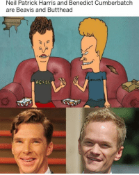 Neil Patrick Harris, Girl Memes, and Benedict Cumberbatch: Neil Patrick Harris and Benedict Cumberbatch  are Beavis and Butthead 🤣😂🤣🤣😂