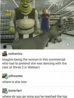 Where do you go from the top?: neilnevins  imagine being the woman in this commercial  who had to pretend she was dancing with the  cast of Shrek 2 in Walmart  yiffmaster  where is she now  bonerfart  where do you go once you've reached the top Where do you go from the top?