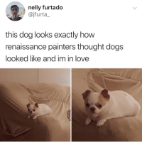 "Dogs, Love, and Nelly: nelly furtado  @jfurta_  this dog looks exactly how  renaissance painters thought dogs  looked like and im in love <p>via <a href=""https://twitter.com/jfurta_/status/971106504160968704"" target=""_blank"">@jfurta_</a></p>"