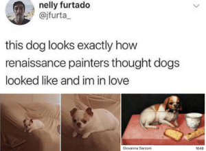Edited to include example :): nelly furtado  @jfurta  this dog looks exactly how  renaissance painters thought dogs  looked like and im in love  Giovanna Garzoni  1648 Edited to include example :)