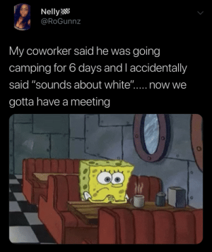 "Dank, Memes, and Nelly: Nelly  @RoGunnz  My coworker said he was going  camping for 6 days and l accidentally  said ""sounds about white""....  now we  gotta have a meeting Becky in HR would like to see you by viachicago22 MORE MEMES"
