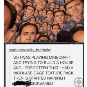 This would be terrifying tbh: neptunes-salty-butthole:  SO I WAS PLAYING MINECRAFT  AND TRYING TO BUILD A HOUSE  AND I FORGOTTEN THAT I HAD A  NICOLASE CAGE TEXTURE PACK  THEN IS STARTED RAINING  CREAMED This would be terrifying tbh