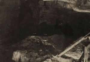 "nerdmilynerdrienoyd: sixpenceee:  This photo was taken in 1895 by an amateur spelunker/photographer named Oren Jeffries while exploring an unmapped section of Grand Caverns, in Southwestern Virginia. At the time it was taken, Jeffries was conducting photographic experiments, using super long exposures to see if anything at all could be captured in the total absence of light—otherwise known as ""cave darkness."" He would situate himself on level ground, extinguish his lantern, and then open the lens of his homemade box camera for as long as he could stand the darkness. During one of these experiments, he heard something approach from the deeper recesses of the cave. Frightened, Jeffries abandoned his experiment and set off one of the Blitzlicht flashes he used for taking traditional photos underground. According to the report he later gave to a local newspaper, Jeffries saw three ""humanoid"" creatures staring at him from the shadows and took off running in the other direction and didn't stop running until he was topside. Several days later, he returned with three other men to retrieve his box camera. This is the image that was recorded on the film inside. (Source)  Holy shit. : nerdmilynerdrienoyd: sixpenceee:  This photo was taken in 1895 by an amateur spelunker/photographer named Oren Jeffries while exploring an unmapped section of Grand Caverns, in Southwestern Virginia. At the time it was taken, Jeffries was conducting photographic experiments, using super long exposures to see if anything at all could be captured in the total absence of light—otherwise known as ""cave darkness."" He would situate himself on level ground, extinguish his lantern, and then open the lens of his homemade box camera for as long as he could stand the darkness. During one of these experiments, he heard something approach from the deeper recesses of the cave. Frightened, Jeffries abandoned his experiment and set off one of the Blitzlicht flashes he used for taking traditional photos underground. According to the report he later gave to a local newspaper, Jeffries saw three ""humanoid"" creatures staring at him from the shadows and took off running in the other direction and didn't stop running until he was topside. Several days later, he returned with three other men to retrieve his box camera. This is the image that was recorded on the film inside. (Source)  Holy shit."
