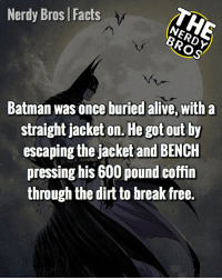 Alive, Batman, and Facts: Nerdy Bros | Facts  Batman was once buried alive, with a  straight jacket on. He got out by  escaping the jacket and BENCH  pressing his 600 pound coffin  through the dirt to break free.  큐. QOTD: Superman or Batman 1v1 fight with no prep? ___________________________________ He must do a lot of Zumba, or Just Dance. That's the only way i can understand his level of physique. __________________________________ thenerdybros Trendy Robin wonderwoman flash cyborg superman JusticeLeague Batman thedarkknight nightwing like4like instagood DC marvel comics superhero Fandom marvel detectivecomics warnerbros superheroes amazing hero comics avengers starwars justiceleague harrypotter starwars follow4follow __________________________________