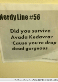 """Memes, Saw, and Gorgeous: Nerdy Line #56  Did you survive  Avada Kedavra  Cause you're drop  dead gorgeous  The #2 most addicting site  MUGGLENET MEMES.COM <p>Saw this my University residence <a href=""""http://ift.tt/1nxFDVI"""">http://ift.tt/1nxFDVI</a></p>"""