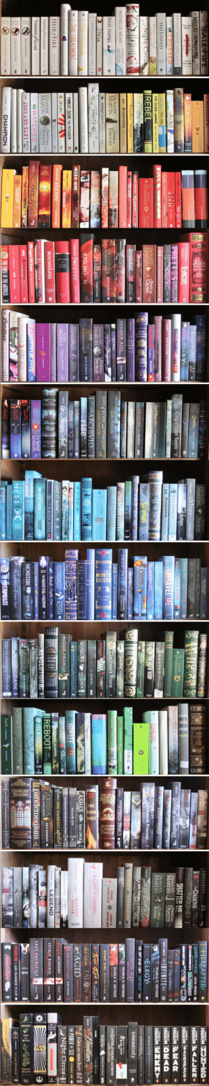 thinkingoflolita:  tilly-and-her-books:  Do you like the colours of the sky? Book edition  Oh my god. I tried arranging my books by colour once. Tried it by size. Tried it by book name or author name. I can never find the perfect system.But this is beautiful. : NESS  solitaire, MAN.  PITTACUS  LORE  FALL FIVE  HARRY POTTER  de ly Helle  J.K.ROWLENG ra  DRAGONFLY  IN AMBER  DIANA  PITTACUS REVENGESSEVEN O  *LOLA OY NEXT DOOR  LORE  GABALDON  and the  J.K.ROWLING r  HARRY POTTER  RUTA SEPETYS between shades of gray  JACKSON  ERICK RIORDAN S  AN ABINDANCE OF KATHERINES JOHN GREEN @  speak  9CHOSSED  PIVH  SALLY  ALLY  CONDIE  GREEN  JK.ROWLING  HaLLoweD  JOHN GREEN PAPER TOWNS  KISS  TAPNICI INE WCM  THE SILVER LININGS MATTHEW QUICK MICADOR  Before I FalI  LAT .....  LAUREN OLIVER  Night Circus  REBEL  AMY  TINTERA  GARIANA  BALDON  THE FIERY  CROSS  LEIN MORGEN  City of Bones  Maggie Stiefvater Lanient  Tina Fey Bossypants  THE GIVER LOIS LOWRY  GAMEBOARD  OF THE  Disharmony  GIN OF NIGATIVLANE  LEAH GIARATANO  RICHELLE MEAD  GODS  GEORGE RR.  MARTIN  GAME oF  THRONES  City of Fallen Angels  FINAL EMPIRE  BRANDON  SANDERSON  ELITE  Jtolen  Lucy Christopher  KATE M.CAFFREY CRASHING Aown a  City of Glass  A THOUSAND PIECES OF YOU  MEAD  the Golorn Lity  O FRACTURED  THE PROGRAM  THE TREATMENT  eleanor& park rainbow rowell  ERISE NINE  PITTACUS  LORE  beautiful monster kate mcaffrey  MARKUS ZUSAK THE MESSENGER  SUZANME COLLINS a HUNGER  MOCHINGJAY  THE Ien dn  HARUKI MURAKAMI  ZAC& MIA  J-BETTS  HEIR FIRE  STIEFVATER Sinner  scholatie pres ID  SARAH I. MAAS  m cestasy Kate McCaffrey  DANCE WITH  DRAGONS  GEORGE RR.  CROWN of MIDNIGHT SARAH J. MAAS  MARTIN  I:DREAMS AND DUST  THRONEfGLASS  AlLr MATCHED  thr Tiery. Hurt  SARAH I. MAAS  CONDIE  MEAD  WineswovEL  MOCKINGJAY  ALSAID  DASHNER  THE KILL ORDER  DELACORTE  PRESS  ADI LETS GET LOST  IAM  THE LOST FILES  HIDDEN ENEMY  NUMBER  PITTACUS  CATCHING FIRE  FOUR  LORE  CHAMPION  THE HUNGER GAMES a  MARIE LU  JKROWLING   LAUREN  KATE  Teardrop  1143-A1  Luey inthe  Bitterblue  KRISTIN CASHORE  RAINBOW  ROWELL  FANGIRL  STEADFAST  ARISE  City of Lost Souls  ACROSS THE UNIVERSE  PRETTRES WESTERFELD  SCOTT  lsli THE DEAYEARE  HADIE  DUTKOSKI  ZHANG  ONCE WE WERE  - 4i  THE BATTLE OF THE LABYRDNTK  ORDAN  Les Misérables  VICTOR HUGO  GEORGE RR.  MARTIN U  A FEAST FOR  CROWS  DESTROYING A.alon  Kate Metatroy  JOHN MARSDEN  DECEPTION CJ.REDWINE  atem  DIVERGENT  VERONICA  ROTH L  ĐEFIANCE CJ REDWINE  Perkine  Duen  Stom  tHyla Kate sORDON  Tuing Tisin  SHADOW KISS  BARDUGO  MEAD  Teneemy NOVIL  Gayle Forman  DREAMS of GODS and MONSTERS  LAINI TAYLOR  If I Stay  OLYMPUS  OESOF  RICK RIORDAN O  KYLIE FORMASIER Masquerade  THE HOUSE OF HADES  DAYS of BLOOD and STARLIGHT  GEORGE RR  MARTIN  A STORMOF  SWORDS  THE  LAINI TAYLOR  FEARLESS EMMA PASS  2 BLOOD AND GOLD  EARCHIVED  rise  Lullaky  FOUR  THE  BENJAMIN PERCY  RED MO N  OMPUS  RICK RIORDAN O  BLOOD OF OLYMPUS  CAREY  THE  AMANDA HOCKING O!  stiefvater forever  scholastie press D  INCHRGENTE  VERONICA  ROTH  VERONICA  ROTH 1  JODI  PICOULT  the Indigo pell  MEAD  change of Heart  THE CINDERELLA MOMENT JENNIFER LOESTER  BOUNDLess  * Onder of the Phrnin  J.K.ROWLING  STIEFVATER  THE DREAM THIEVES  SAM  SHA  THE BONE  SEASON  O  JOHNNY BE GO0  Will Grayson, Will Gayson n GREEN A DAD LAVITAN  THE LUNAR  sler.  СHHOНСТES  M DisharmonyAn GIAAO  Radal Htaukins REBEL BELLE  THE LUNAR  CниONICLES  marissa meyerO  Haly nd Prine  O JKROWLING  DESTEFANO  T  THE CURSE OF THE WENDICOD  Landline AOWEBAE  THE LUNAR  CHRONICLES  Hper magso   MONTE  CRISTO  HUCKLERE  ABRAHAM  LINCOLN  OTHER  NOVELS  MARK  TWA  THE LOST FILES  THE LEGACIES  GEORGE RR.  MARTIN  A STORM oF  SWORDS  TORE  OF TRITON  BANKS  ESTEEL AND SNOW  stiefrater shiver  O POSEIDON  shalala p D  NPIUNE E  EV3 & AGAM a  Citrof Ashes  DIANA  VOYAGER  GRANT  APPLEGATE  GABALDON  SHATTERED ERE  UNRAVEL ME  N Disharmony N IAATANO  SLATED  SARAH I. MAAS  KILLING WOODS  O THE ISLE OF BLOOD  Y CHRISTORHER  rachael  craw  SPARK  Fire  HEROPSOF  OLYMPUS  KRISTIN CASHORE  RICK RIORDAN O  THE MARK OF ATHENA  JOHN MARSDEN  eve  CAREY  DEEP BLUE  JENNIFER  DONNELLY  A delirium  Graceling  KRISTIN CASHORE  RIORDAN  THE TITAN'S CURSE  -Clockwork Prince  SUZANNE COLLNS HUIGER  GAMES  DRUMS OF  DIANA  GABALDON  AUTUMN  DELIVERANCE C.J. RÉDWINE  atem  SHADOWS  ILSA J.BICK  THE FAULT IN OUR STARS  JOHN GREEN  KIORDAN THE LIGHTNING T HIẾF  ESELECTION STORIES  SELECTION  BLOOD PROMISE  MEAD  VERONICA  ALLEGIANI  ROTH  LET IT SNOW  bird Crystal Chan  THE RAVEN BOYS  E THE COLDEST GIRL UN COLDTOWN  t  REVOLUTION9  THE DARKET Ds  NEVER FADE  ALEXANDRA  BRACKEN  JKROWLING  ROSEMARY  Spirit nd Dtrst  CLEMENT-MOORE  requiem  ILSA J.BICK  AUREN OLIVER  MONSTERS  HYMPUS  HILSON OF NEPTIUNI  RICK RIORDAN O  PATRICK  E  NESS |  ABaautifulDARK  IS the unbecoming of mara dyer  the evolution of mara dyer  DAVIES  THE MONSTRUMOLOCIST  HODKIN  Wake  AMANDA HOCKING E   A BOR  CHARLES  DICKENS  JCOMPLE  SHERLOC  THE  BOOK  THIEF  SIR ARTHUR  CONAN  DOYLE  Novels  PICADOR  FRECOA  FITZPATRICK  silence  FROSTBITE  MEAD  COLLECTOR  BECCA  THE  FITZPATRICK crescende  MARIE LU PRODIGY  IGN CA finale  MAFI SHATTER ME  Silver Sbadowps  MEAD  RICHELLE MEAD MASN  GEORGE RR.  MARTIN  A DANCE WITH  SILLY GIRMIR  DRAGONS  2 AFTER THE FEAST  Summonings  GEORGE RR  MARTIN  ACLASH  KINGS  TANGIRL 3  Clockwork Princess  Siege tuemaE  Shadow Bone  BARDUCO  DIANA  AN ECHO  GABALDON  IN THE BONE  Clockwork Angel  BARDUCO  and  E BODY ELECTRIC  VIRGINIA BERGIN IN  HOBBIT  J. R. R. TOLKIEN I  Parare  ONSTER CAT.S  Prierf Askahan  JK. ROWLING  DASHNER THE SCORCH TRIALS  DIANA  SEVER  A BREATH OF  SNOW AND ASHES  GABALDON  A GAME OF THRONES  GEORGE R.R. MARTIN  the Originals  CAT PATRICK  ASHES  ILSA J.BICK  MARKUS  ZUSAK  THE BOOK THIEF  IGNITE ME  HOLLOW CITY  Edge  Nowhere  MISS PERBORINErS HOME POR PECULIAR CHILDREN  ELIZABETH GEORGE  AmandaHocking  Torn  BRACKEN THE DARKEST-MHNDS  WATER WARS  CAMERON  STRACHER O  THE MAZE RUNNER  LEGEND  MARIE LU  |REBOOT  OLYMPUS  HEROESC  AMY  TINTERA  ARICK RIORDAN O  THE LOST HERO  and the  O ISLA HAPPILY EVER AFTER  pandemonium  DAVIES  AShtachaadtIGHT  where she went  speak  Gayle Forman  SECCA  FITZPATRICK  hush hush  BECCA  FITZPATRICK  silence  Ran  Dunly Hall  The Shadowhunter's Codex  J.K.ROWLING  Clare Lewis   HEREAFTER  CHARLIE  HIGSON DZTED-  LOOKING FOR ALASKA JOHN GREEN  HIGSON ELALLENI  CHARLIE  N ALEXANDER GORDON SMITH  SOLITARY  CHARLIE  ORSON SCOTT CARDENSESI-CO  HIGSON E<URHLHOEO  Giass HOUSES  HIGSON ELWAR  CHARLIE  LORD of MISRULE  CHARLIE  ICK YANCEY THE NFINITE SEA  HIGSONAED  CHARLIE  MARIA V. SNYDER  magic study  HIGSON EWZWMY•  ELEGY  SUSAN EE WORLD AFTER  A  N  THE FADLT IN OUR STARS TAHN COEEN  SUSAN IE ANGELFALL s ANDT IND ne  PRS  Junn GREEN  Onte  UNeartHLy  CAREY  MARIA V. SNYDER  poison study  MARKUS ZUSAK  the be ok thiet  ICADOR  MARJA V. SNYDER  fire study  DAUGHTER of SMOKE and BONE  LAINI TAYLOR  GONE GIRL GILLIAN FLYNN  Wolf Pacet  Melissa de la Cruz  atem  True Fere * ,  GARY  MEEHAN  TE FALL  ADRIAN CHONG  Bloodlines  JULIE KAGAWA TALON  ACID  MEAD  A GREAT AND TERRIBLE BEAUTY  EMMA PASS  HE POWER OF SIX  PITTACUS LORE e  High Stakes & Hunted ALEX DUVAL  Night Circus  Vampire ACADEMY  ERIN MORGENSTERN  MEAD  EIN M  RGENSTERN  SPIRIT BOUND  MEAD  LAST SACRIFICE  MEAD  PITTACUS LORE I AM NUMBER FOUR O  THE LAST OLYMPIAŃ  RIORDAN  CMampr Digie  MARCUS  CHOSTSf HEAVEN  SEDGWICK thinkingoflolita:  tilly-and-her-books:  Do you like the colours of the sky? Book edition  Oh my god. I tried arranging my books by colour once. Tried it by size. Tried it by book name or author name. I can never find the perfect system.But this is beautiful.