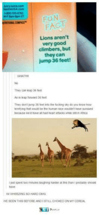Fucking, Funny, and Omg: NestleUSA.com  -800-510-6763  UTRITIONAL COMPASS  FACT  Lions arent  very good  climbers, but  they can  jump 36 feet!  WHATH  They can leap 36 teet  As  leap forward 36 teet  They dont mp 36 feet into the fucking sky do you knaw how  territying that would be the human race wouildn t have survived  because we d have al had heart atacks wae sta in Aica  just spent two minutes laughing harder at s than I peobabity shoud  IM WHEEZING SO HARD OMG  IVE SEEN THIS BEFORE AND ISTILL CHOKED ON MY CEREAL
