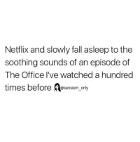 Fall, Funny, and Memes: Netflix and slowly fall asleep to the  soothing sounds of an episode of  The Office I've watched a hundred  times before osarcasm only SarcasmOnly