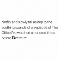 Fall, Funny, and Memes: Netflix and slowly fall asleep to the  soothing sounds of an episode of The  Office l've watched a hundred times  before @sarcasm_only SarcasmOnly