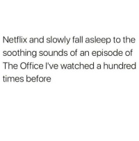 Fall, Memes, and Netflix: Netflix and slowly fall asleep to the  soothing sounds of an episode of  The Office I've watched a hundred  times before I could dictate a whole script of the office I've watched it so much 😂😩🙋🏽‍♀️(@the_mermaid_lagoon)