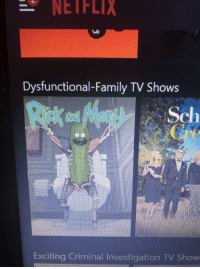 Family, Netflix, and TV Shows: NETFLIX  Dysfunctional-Family TV Shows  Exciting Criminal Investigation TV Show