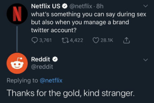 Me_irl: Netflix US O @netflix · 8h  what's something you can say during sex  but also when you manage a brand  twitter account?  Q 3,761  274,422  28.1K  Reddit  @reddit  Replying to @netflix  Thanks for the gold, kind stranger. Me_irl