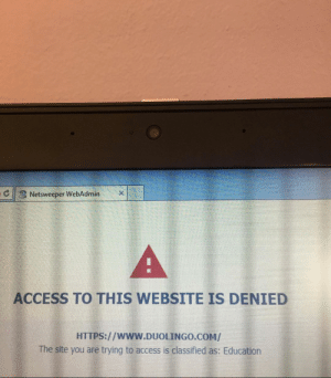 School, Access, and Website: Netsweeper WebAdmin  ACCESS TO THIS WEBSITE IS DENIED  HTTPS://www.DUOLINGO.COM/  The site you are trying to access is classified as: Education My school blocked a website because it was Educational