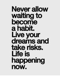 Memes, 🤖, and Motive: Never allow  Waiting to  become  a habit.  Live your  take risks.  Life is  happening  nOW Friday Motivation 🌻 @ametriadock fruitiontips vocalcoach vocaltraining vocallessons Music