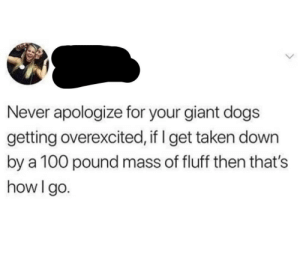 Dogs, Taken, and Best: Never apologize for your giant dogs  getting overexcited, if I get taken down  by a 100 pound mass of fluff then that's  how I go. The best way to go
