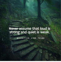 Memes, Quiet, and Strong: Never assume that loud is  strong and quiet is weak  OROSTIVE-VIBE-TRIBE Truth via @positive_vibe_tribe 🙏🏻