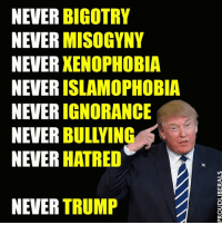 SHARE if you are #NeverTrump!!!  Please LIKE Proud Liberals for all your political news!!!: NEVER BIGOTRY  NEVER  MISOGYNY  NEVER  XENOPHOBIA  NEVER  ISLAMOPHOBIA  NEVER  IGNORANCE  NEVER  BULLYING  NEVER HATRED  NEVER TRUMP SHARE if you are #NeverTrump!!!  Please LIKE Proud Liberals for all your political news!!!