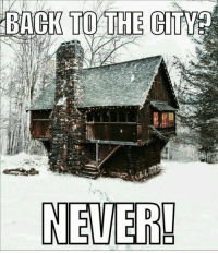 Never! Cabin Life Meme #cabins #offgrid #homesteading #countryliving #meme: Never! Cabin Life Meme #cabins #offgrid #homesteading #countryliving #meme