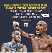 Beef, Beef, and Conor McGregor: NEVER COMPARE CONOR MCGREGOR TO ME  THAT S TOTAL DISRESPECT  I'M AN ELEPHANT AND ELEPHANTS  DON'T BEEF WITH ANTS  6633  ELEPHANTS DON'T EVEN SEE ANTS  FLOYD MAYWEATHER  br  VIA TMZ SPORTS Floyd Mayweather doesn't even see Conor McGregor 🐜 (via @bleacherreportuk)