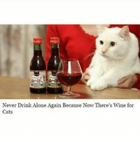 White women rejoice! (@prozac_morris): Never Drink Alone Again Because Now There's Wine for  Cats White women rejoice! (@prozac_morris)