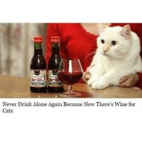 Never Drink Alone Again Because Now There's wine for  Cats Fuck.. I have a dog