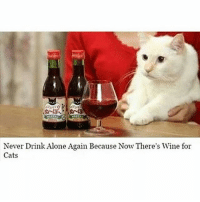 Never Drink Alone Again Because Now There's Wine for  Cats Rejoice