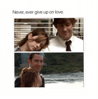 Love, Memes, and Never: Never, ever give up on love maybe it can happen to you.. ———— theoffice dundermifflin dwightschrute michaelscott theofficeshow parksandrec