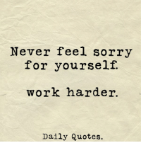 Sorry: Never feel sorry  for yourself.  work harder  Daily Quotes.