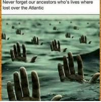 Memes, 🤖, and Never Forget: Never forget our ancestors who's lives where  lost over the Atlantic RL