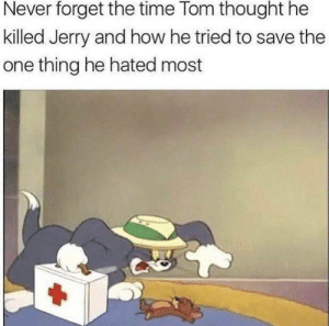 Tumblr, Blog, and Http: Never forget the time Tom thought he  killed Jerry and how he tried to save the  one thing he hated most awesomesthesia:  Comment F to pay respects