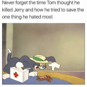 Dank, Memes, and Target: Never forget the time Tom thought he  killed Jerry and how he tried to save the  one thing he hated most He really did care by Trollalola MORE MEMES