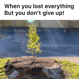 Never give up!: Never give up!