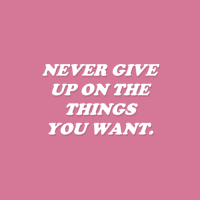 Never, You, and  Things: NEVER GIVE  UP ON THE  THINGS  YOU WANT