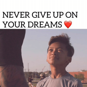Memes, Dreams, and Never: NEVER GIVE UP ON  YOUR DREAMS